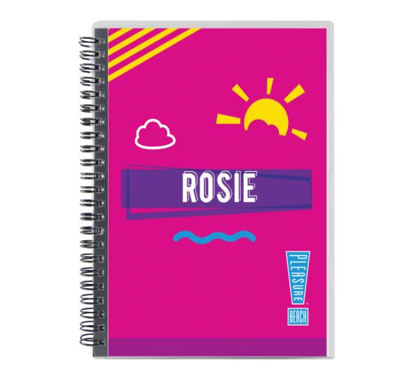Notebook17